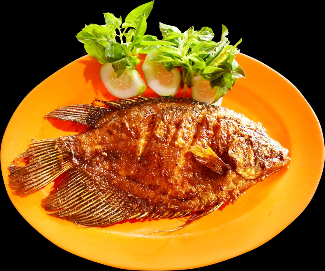 Ikan gurame goreng atau bakar