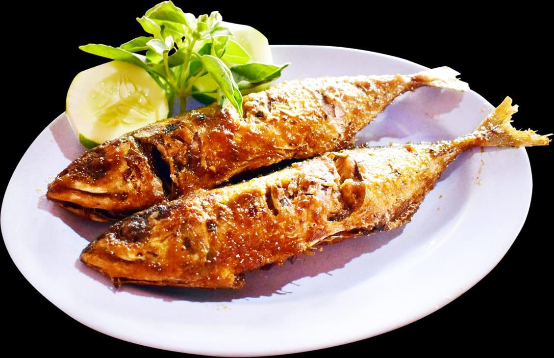 Ikan gembung bakar atau goreng